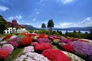山のホテルつつじ・しゃくなげフェア2012開催