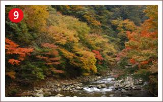 (9)早川渓谷・塔ノ沢付近