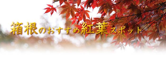 箱根のおすすめ紅葉スポット