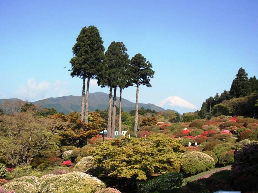 富士山(山梨県、静岡県)の世界文化遺産としての条件付きの登録を勧告されました。