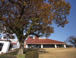 秋のホテル庭園と外観