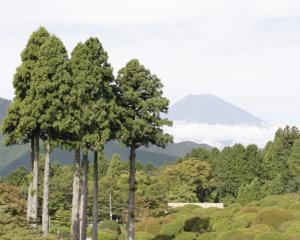 山のホテルから望む富士山