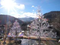 箱根ガラスの森美術館のクリスタル・ガラスのツリー(イメージ)