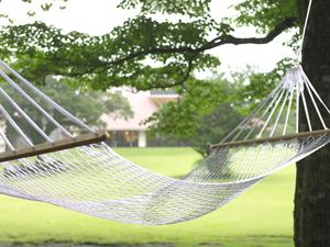 庭園のハンモック(イメージ)