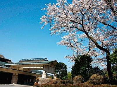 ホテルはつはな桜の時期の外観