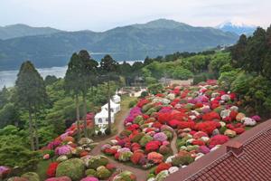 2012年5月20日の庭園風景