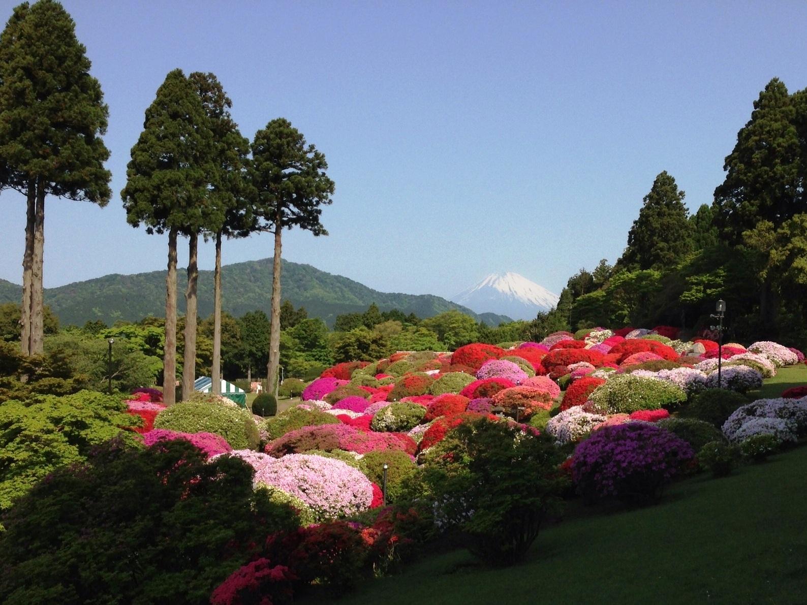 2013年5月14日(火)時の山のホテル つつじ庭園