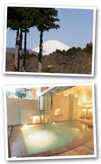 「庭園から見る富士山」芦ノ湖温泉随一の自家源泉「つつじの湯」